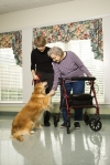 a-1 home care home care yorba linda